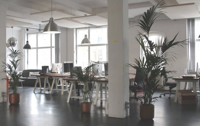 Office decoration trends 2018