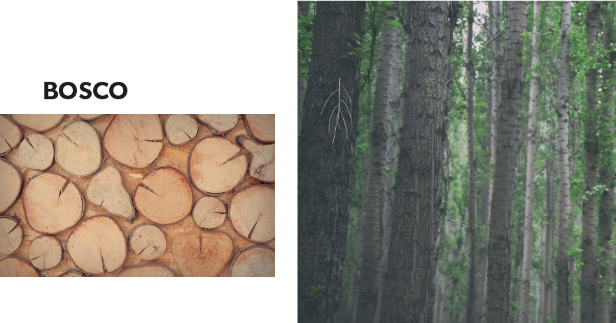 bosco-collaborative-wood-details-structure-stability-ultimate-trends-urban-and-pristine
