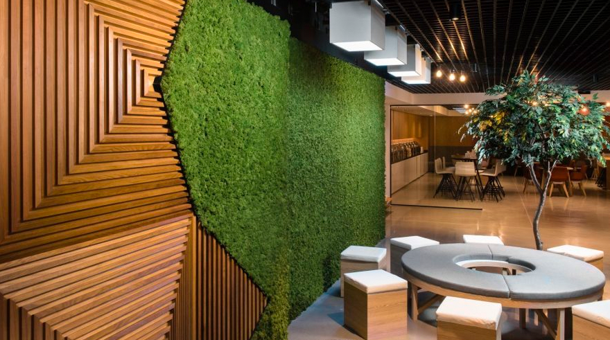 Biophilic design by Bluehaus Group office interior design trends for 2019